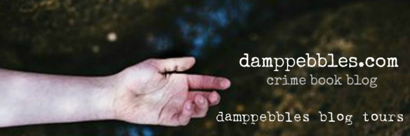 damppebbles blog tours.jpg