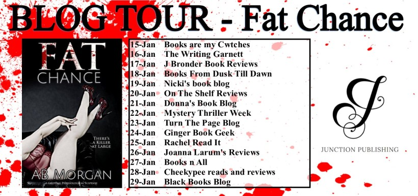 BLOG TOUR banner - Fat Chance.jpg